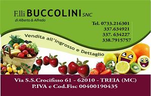 Logo Buccolini