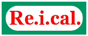 Logo REICAL